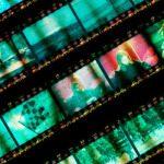 Guardare film in lingua francese on-line