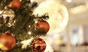Riciclare l'albero di Natale a Parigi