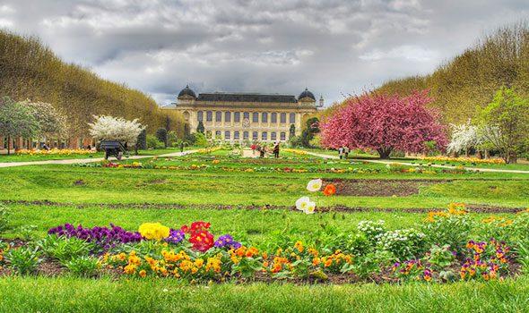 Il Jardin des Plantes: natura e fascino a Parigi