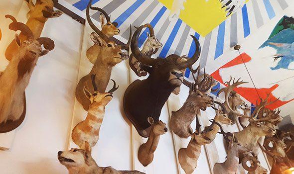 museo-caccia-natura-parigi_2