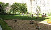 giardino-rosiers-joseph-migneret