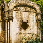 Le Cimetière des Chiens di Asnières-sur-Seine, il più antico cimitero di animali al mondo