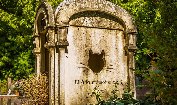 Le Cimetière des Chiens di Asnières-sur-Seine, il più antico cimitero per animali al mondo