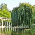 I 6 parchi di Parigi perfetti per una passeggiata romantica