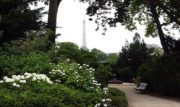 Le Square d'Ajaccio: piccolo e romantico giardino dove respirare un'atmosfera tutta parigina