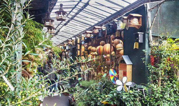 L'incantevole mercatino dei fiori e degli uccelli sull'île de la Cité di Parigi