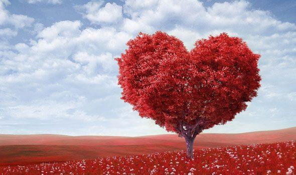 Le 20 Piu Belle Frasi D Amore In Francese Da Usare A San Valentino