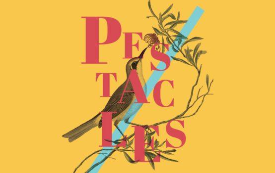 Les Pestacles 2019